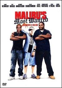 Malibu's Most Wanted – Rapimento a Malibu'