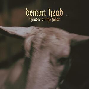 Thunder on the Fields - Vinile LP di Demon Head