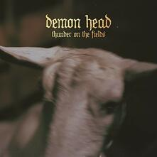 Thunder on the Fields - Vinile LP di Demon Head