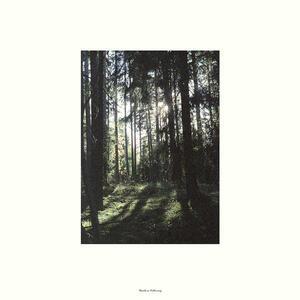Folkvang - Vinile LP di Folkvang