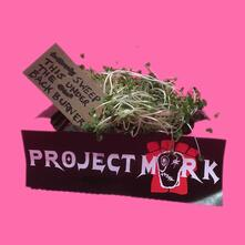 Sweep This Under the Backburner - Vinile LP di Project Mork