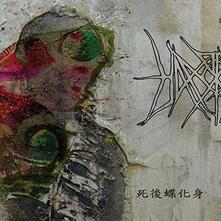 Reborn in Butterfly - CD Audio di Hanormale