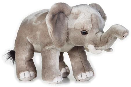 Peluche Elefante Africano - 3