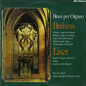 Brani per Organo - Vinile LP di Johannes Brahms,Kurt Rapf
