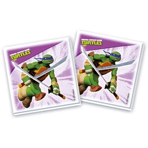 Giocattolo Teenage Mutant Ninja Turtles. Edukit 4 in 1 Clementoni 1
