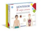 Montessori Il corpo umano