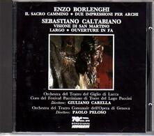 Il sacro cammino / Visione di S. Martino - CD Audio di Sebastiano Caltabiano,Enzo Borlenghi