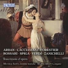 Trascrizioni d'opera - CD Audio di Marco Arlotti,Michele Santi