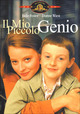 Cover Dvd Il mio piccolo genio