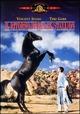 Cover Dvd Il ritorno di Black Stallion