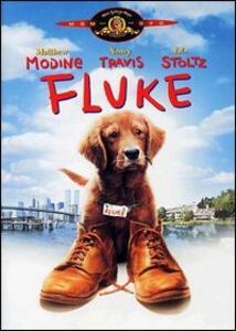Fluke di Carlo Carlei - DVD