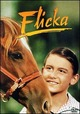 Cover Dvd DVD Flicka, un cavallo per amico