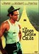 Cover Dvd DVD La lunga estate calda