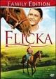 Cover Dvd DVD Flicka - Uno spirito libero