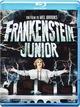 Cover Dvd Frankenstein Junior