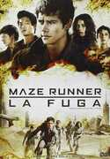 Film Maze Runner. La fuga Wes Ball