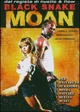 Cover Dvd Black Snake Moan