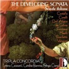 Developing Sonata - CD Audio di Ensemble Tripla Concordia