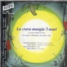 Ven ch'i Balo - CD Audio di Daniele Bertotto