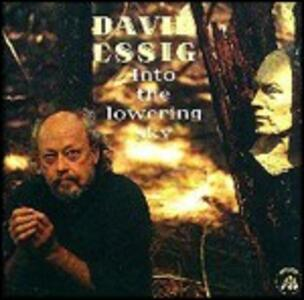 Into the Lowering Sky - CD Audio di David Essig