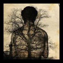 Ecce Combo - CD Audio di Alfonso Santimone