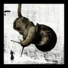 Il drago è astratto - CD Audio di Quilibrì