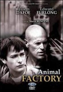 Animal Factory di Steve Buscemi - DVD