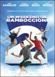 Cover Dvd Un Weekend da bamboccioni 2