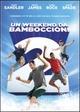 Cover Dvd Un Weekend da bamboccioni 2