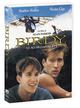 Cover Dvd Birdy - Le ali della libertà