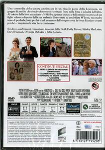 Fiori d'acciaio<span>.</span> Collector's Edition di Herbert Ross - DVD - 2