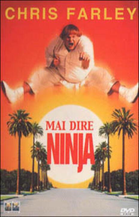 Mai dire ninja di Dennis Dugan - DVD