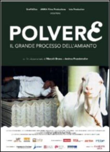 Polvere. Il grande processo all'amianto di Andrea Prandstraller,Niccolò Bruna - DVD
