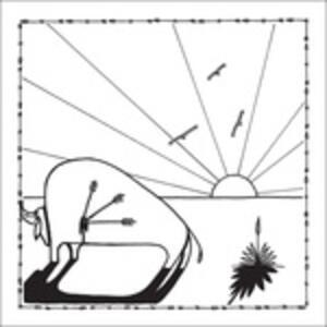 Broken Arrows - Vinile LP di Micah P. Hinson