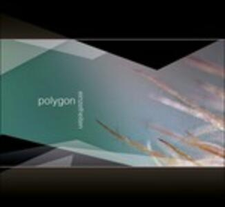 Einzelheiten - CD Audio di Polygon