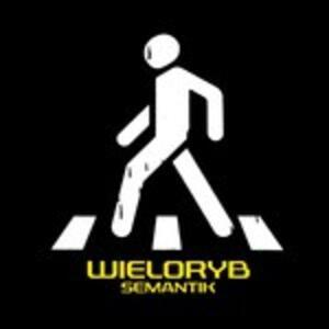 Semantik - CD Audio di Wieloryb