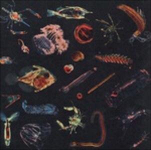 Plancton - CD Audio di Alessandro Fiori