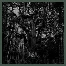 Seasons of Desolation (Limited Edition) - Vinile LP di Enisum
