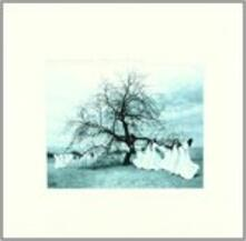 A Harvest of Winds ep - Vinile LP di Dawn & Dusk Entwined