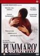 Cover Dvd Pummarò