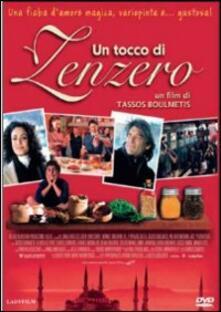 Un tocco di zenzero di Tassos Boulmetis - DVD