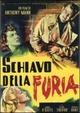 Cover Dvd DVD Schiavo della furia