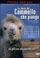 Cover Dvd La storia del cammello che piange