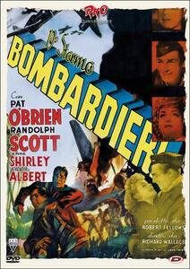19° stormo bombardieri di Richard Wallace - DVD