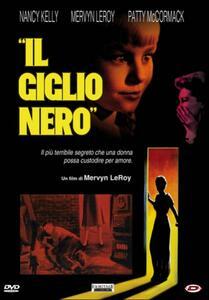 Il giglio nero di Mervyn LeRoy - DVD