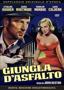 Giungla d'asfalto di John Huston - DVD