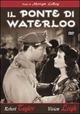 Cover Dvd DVD Il ponte di Waterloo