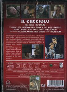 Il cucciolo (DVD) di Clarence Brown - DVD - 2