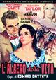 Cover Dvd DVD L'albero della vita