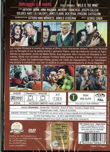 Selvaggio è il vento di George Cukor - DVD - 2
